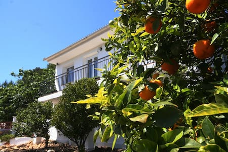 Spanish Country Villa with pool and gardens - Masllorenç - Дом