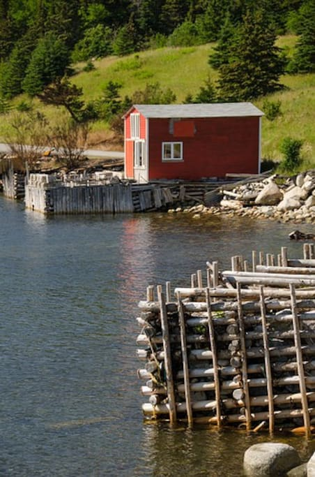 """Whale Cove or as is often called """"Wild Cove"""" is your quintessential coastal village, of once upon a time.  Now these fishing stages which dot the shoreline, tell the story of fishing practices gone by."""