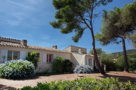 Cosy Holiday Home in Cargèse Corse-du-Sud near Sea