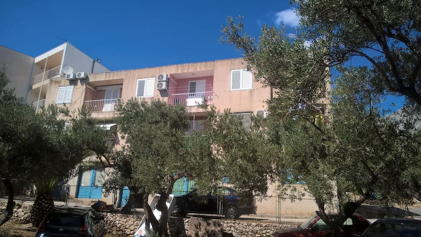 One bedroom apartment with balcony and sea view Podgora, Makarska (A-13714-a)
