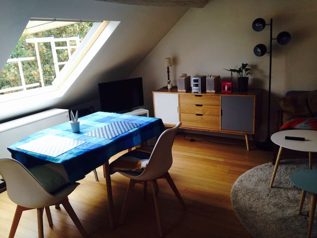 Cosy flat in the heart of brussels - Ixelles - Apartment