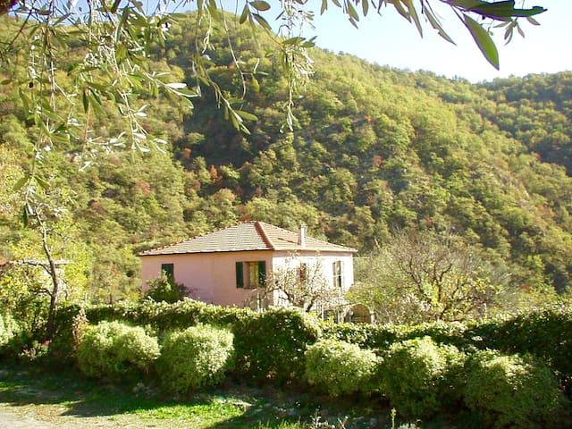 Borgata Castello Casa degli Orti - Chiusanico - House