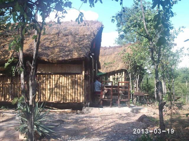 """Warthogs Bush Camp Cabin """"Wartie"""""""