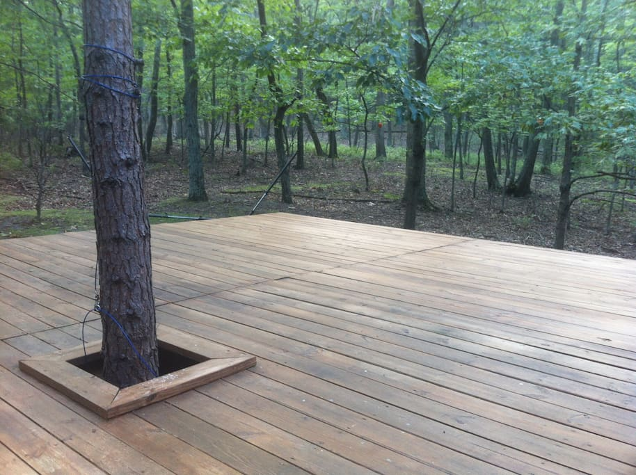 The deck is 400 square feet and perfect for lounging, yoga, or watching the wildlife in Sleepy Creek State Wildlife Area...