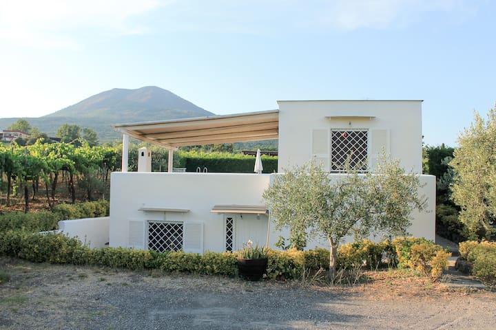 VESUVIO WINE COTTAGE