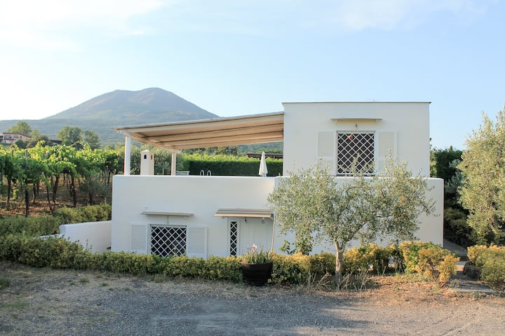VESUVIO WINE COTTAGE