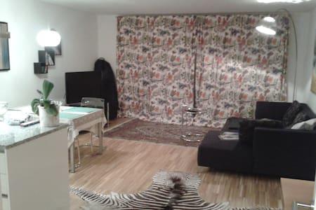 Designerappartment near Salzburg - Hallein - Apartament