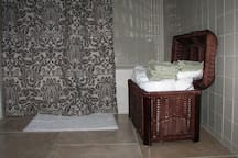 Full bath w tub/shower, pedestal sink etc, but it is tiny.  Oversize towels make up for it!