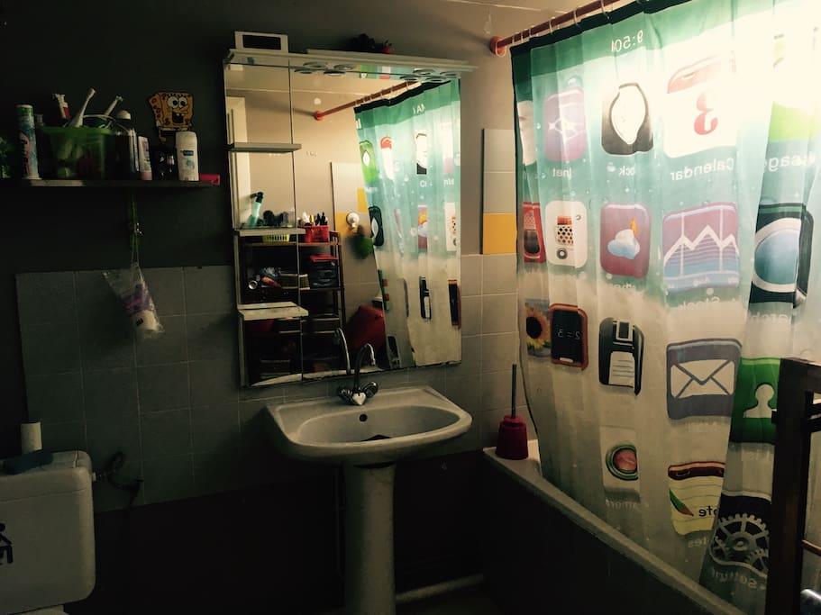 Salle de bain (wc) du haut.