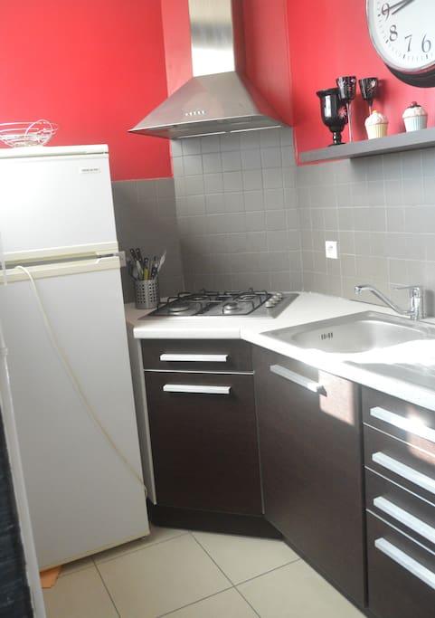 Cuisine équipé avec frigo, four-micro-onde hotte et nécessaire de cuisine