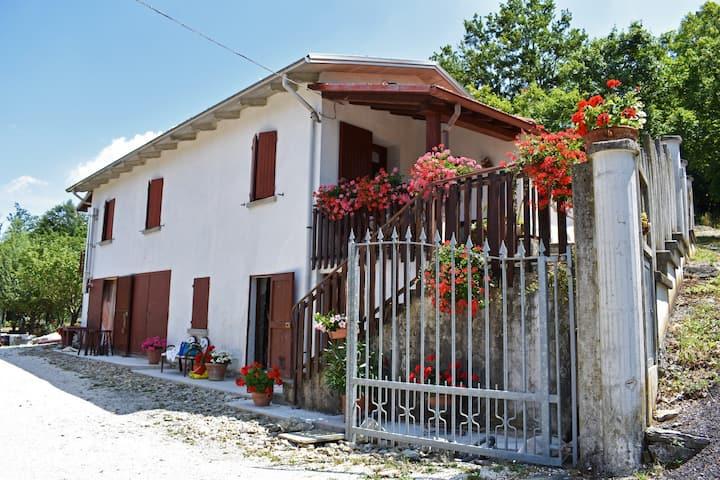 Villa Zacchi 2