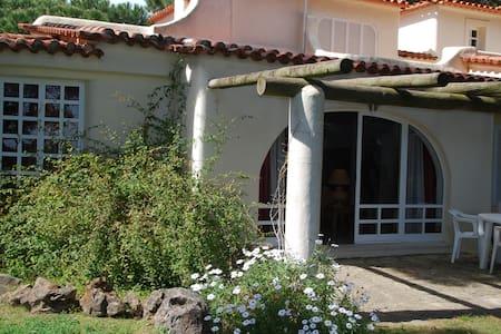 Maravillosa Villa en Cascais (8pax) - カスカイス - 別荘