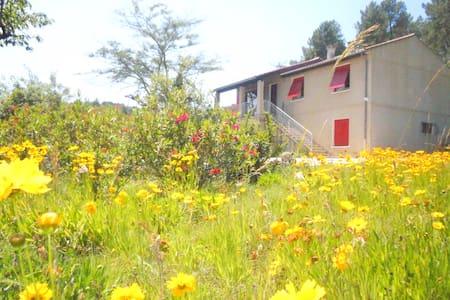 Maison indépendante: Le Bouffayou - Haus