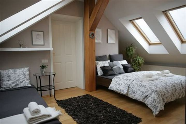 Romantic rooms in heart of Prague - Praga - Loft