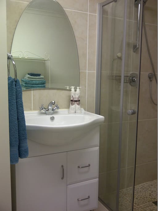 En suite Shower and Dressing Rm