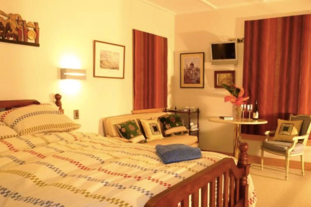 Pisa View Room with queen bed