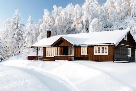 Golsfjellet Vest/Hjartingstølen - Gol - 小木屋