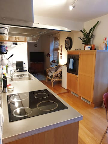 Charming apartment in Lademoen