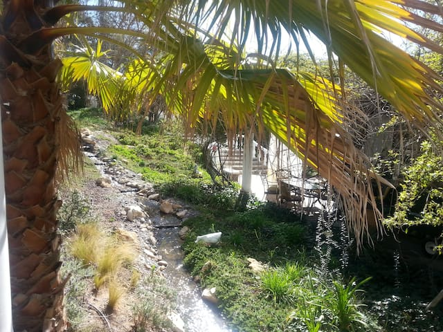 Serenity Retreat Pond