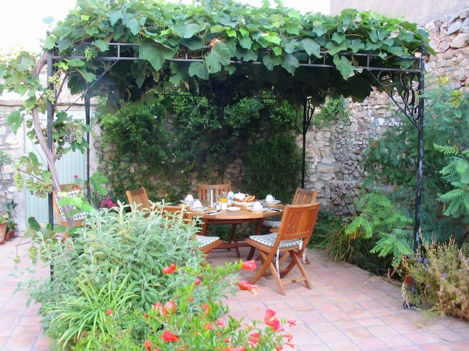 Breakfast and dinner under the old vine in our secluded courtyard