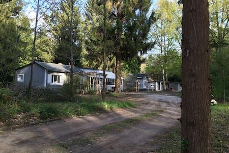 les 3 Gîtes - Cottage + chalet - Noisy-sur-École