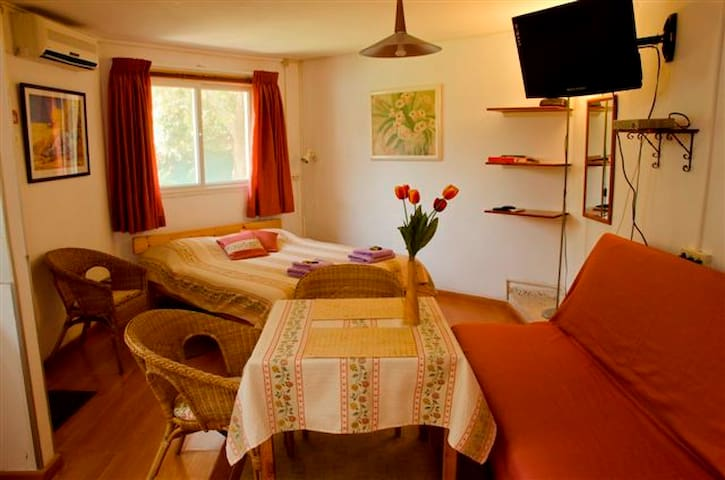 Grushka zimmer Binyamina - Tulip - Binyamina - Appartement