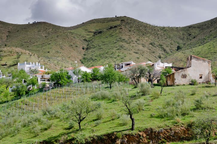 Rural Studio For Rent in Ferrer/Granada