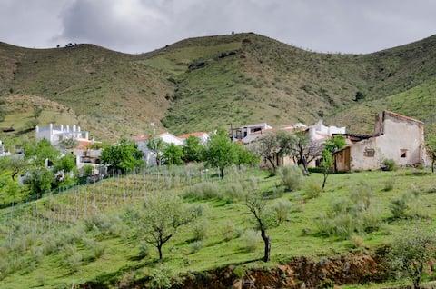Studio wiejskie do wynajęcia w Ferrer/Granada