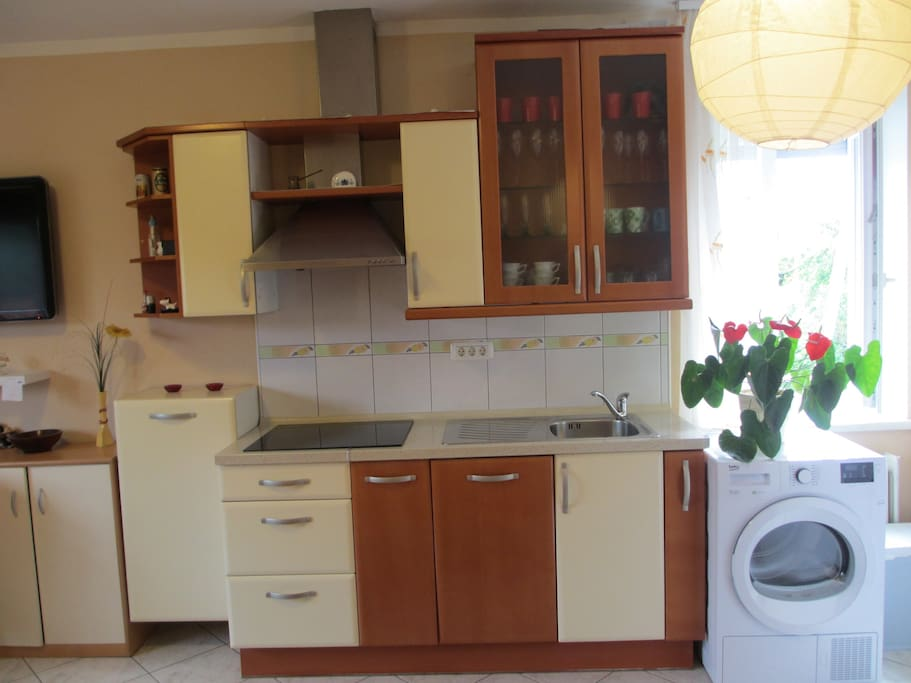 Kitchen with everything that you need to make ur own meals :) Kitchen has fridge as well.