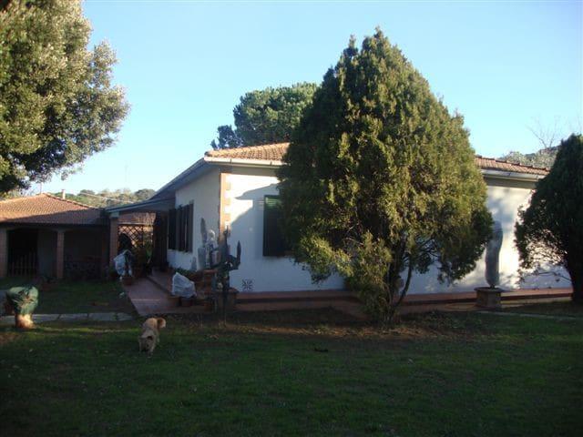 villa con giardino e piscina affitt - Piombino - Villa