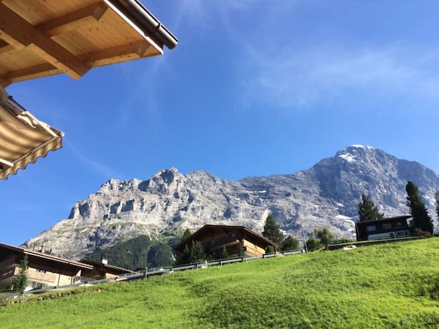 Amazing Eiger views, top/Europe