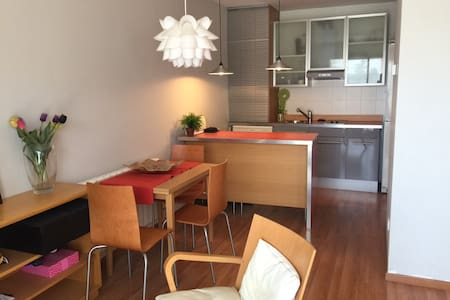 New apartment in a rural area ( 50 min. from Barcelona)