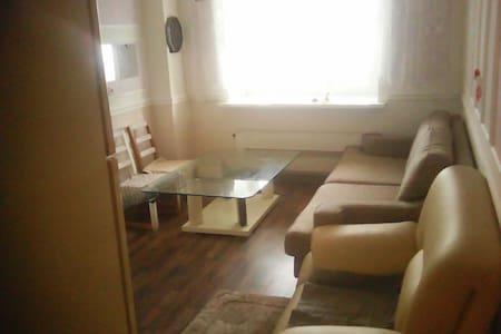 Удобная квартира, рядом парк, речка - Lägenhet
