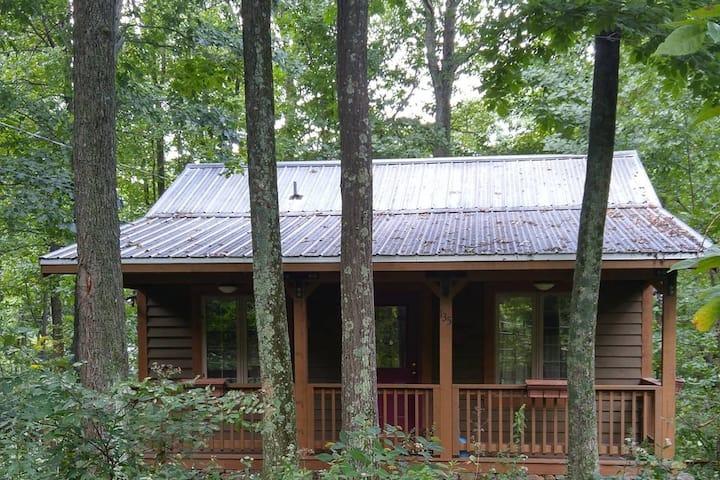 Carson Mountain Cottage