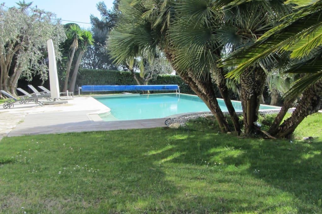 nice bedroom open to amazing garden villas for rent in. Black Bedroom Furniture Sets. Home Design Ideas