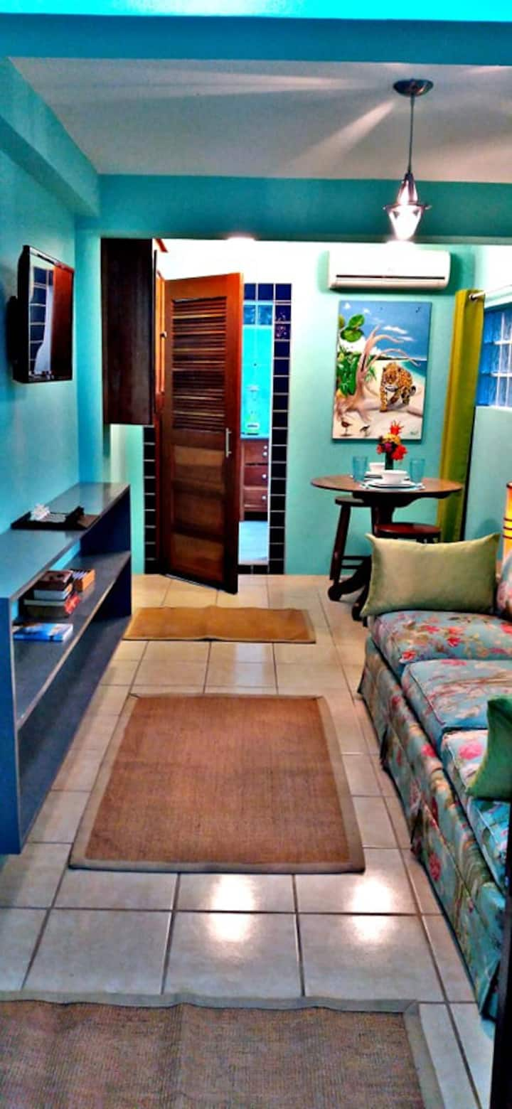 Garden apt w/porch, kitchen, AC, WIFI, bikes, pool