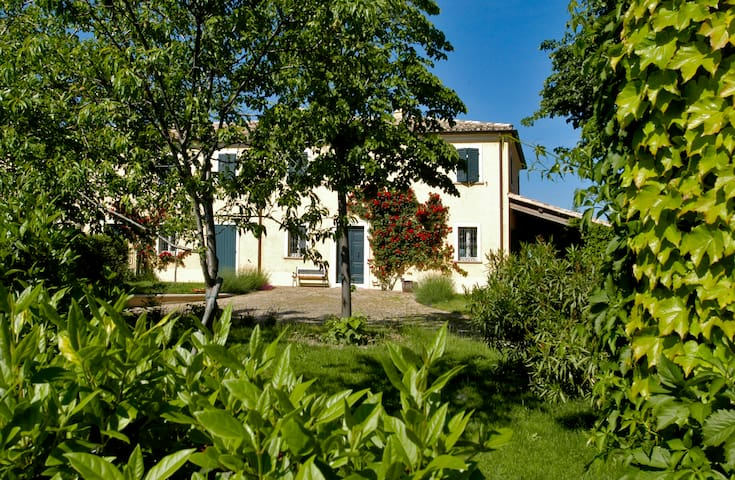 Casa Ezelina Bed and Breakfast - Province of Pesaro and Urbino - Aamiaismajoitus