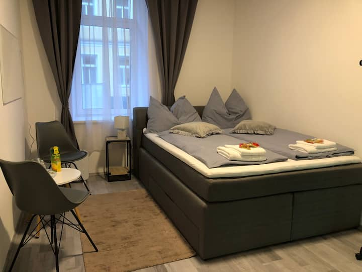 Nice Apartment, near Vienna Centar 2