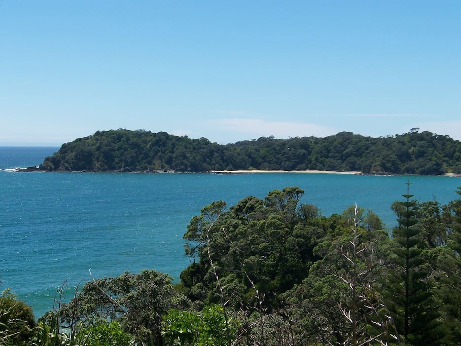 Beautiful Whale Bay.  Accessible by a tranquil 15min bush walk or by boat.