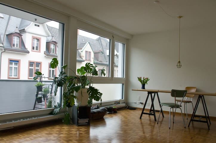 1room studio for your summer trip to basel - Basileia - Apartamento