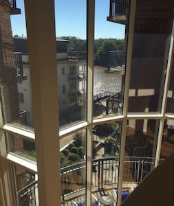2 story loft/ floor2ceiling windows - Condominium