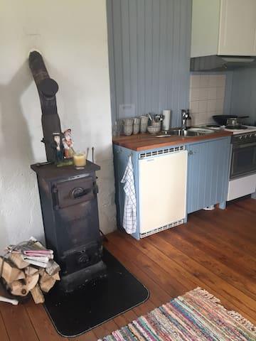 Köksdelen med spis, kokplattor,ugn samt kylskåp med Isfack