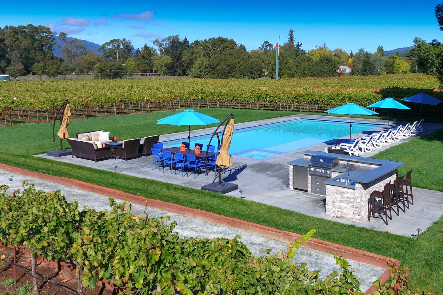 Relax by the 25 x 50' pool with spa. Brand new outdoor kitchen, dining and lounging spots surrounded by vines.