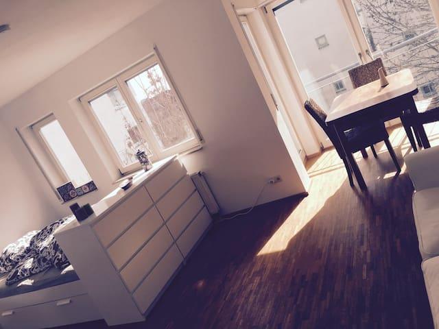 Moderne Wohnung im Zentrum von Speyer - Speyer - Wohnung
