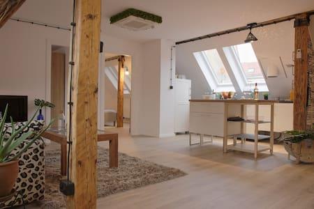 Studio Silesia - Gliwice - 公寓