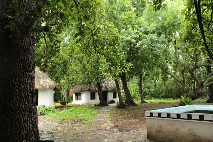 Mayan cottage  with swimmingpool, Puuc Route, Akil
