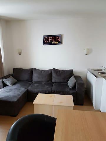 Studio meublé dans maison de maitre - Vendenheim - 飯店式公寓