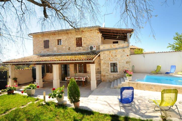 Double stone house Gržini with a pool