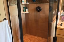 Master bath spacious shower