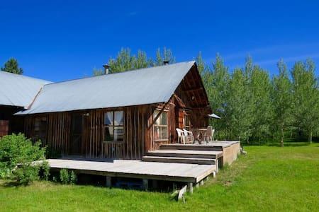 Rustic Cabin for Solar Eclipse - Tetonia - Haus